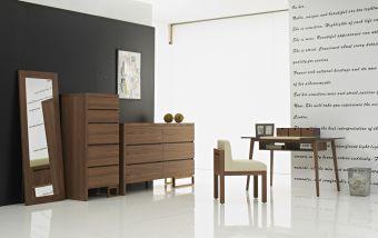 ✅ Dana Modern Office Desk | VivaSalotti.com | pic4
